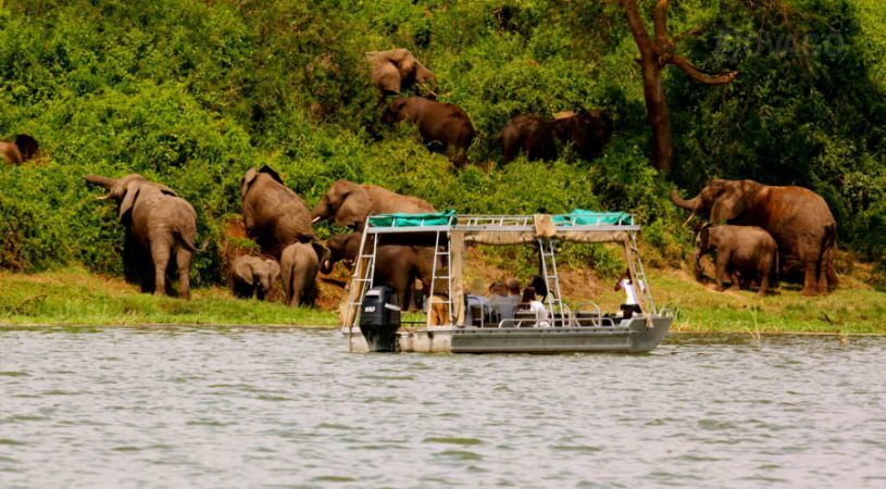 Boat cruise- Queen Elizabeh- National Park