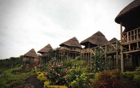 Park-view-safari-lodge.jpg