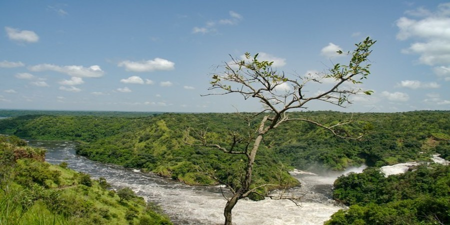 Murchison-falls-narrow -falls.jpg