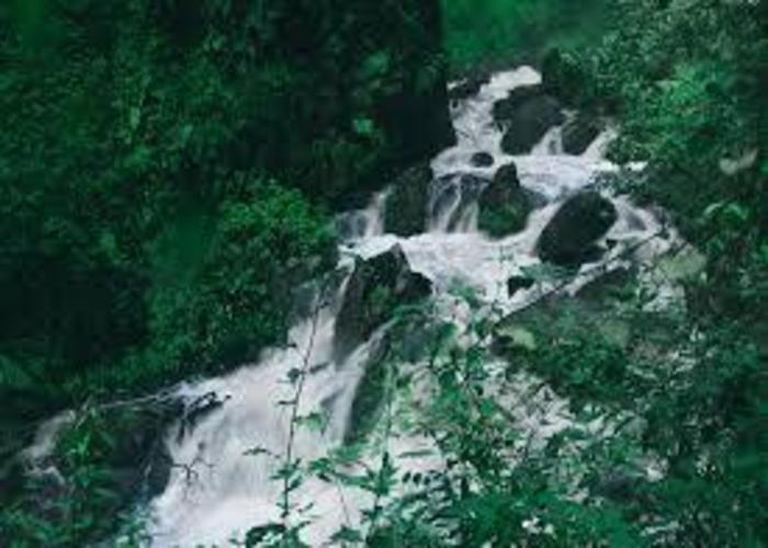 Kamiranzovu-waterfalls-Nyungwe-national-park.jpg