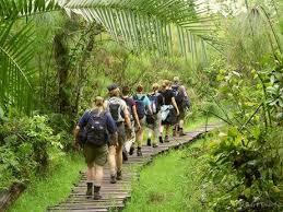 kibale_forest_walk.jpg
