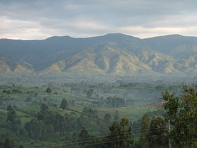 The Rwenzori mountains