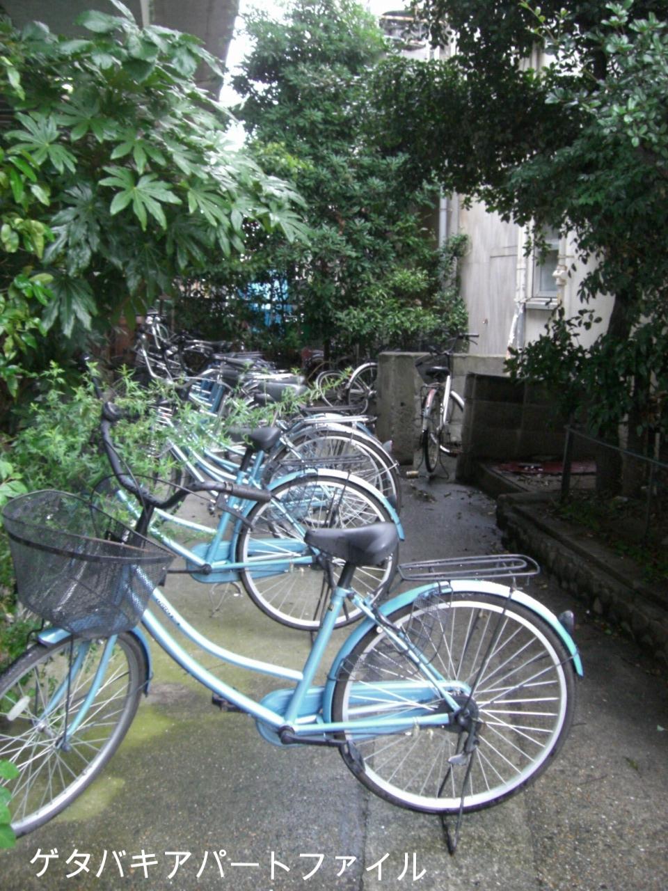 同じ色の自転車がいっぱい。市場仕様なのかな?