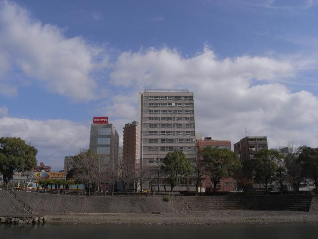 正面から。新屋敷団地より高い建物は  奥の公社団地くらいしかありません。