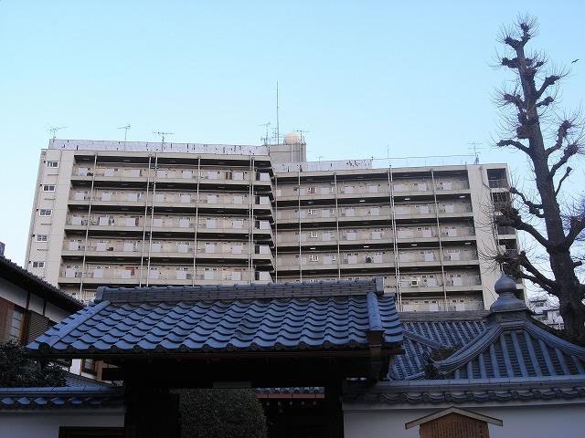 団地裏手。 京都は高い建物が 少ない街なので 市街地住宅が目立ちます。