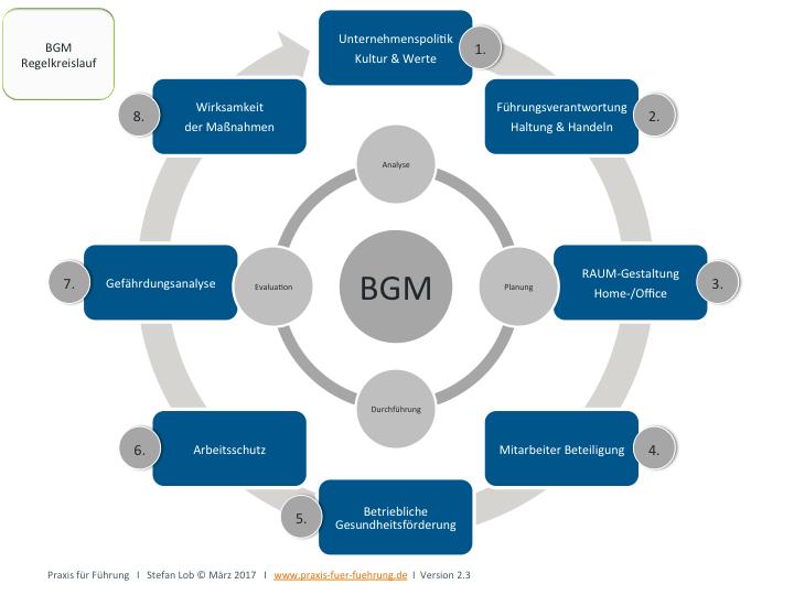 Verfahrensmodell zur Einführung von betrieblichem  Gesundheitsmanagement (BGM)