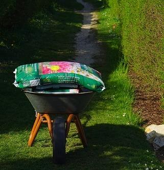 Richtige Blumenerde für die Aussaat und für Jungpflanzen wählen