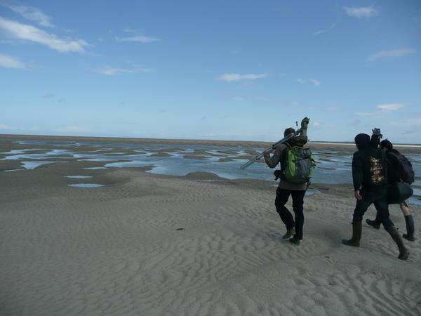 à la découverte de la faune et de la flore de la Baie