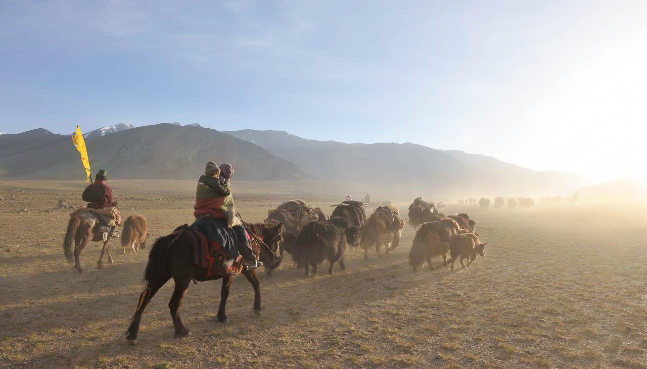 Die Nomaden in Ladakh wechseln 4 bis 6 Mal pro Jahr ihren Lagerplatz