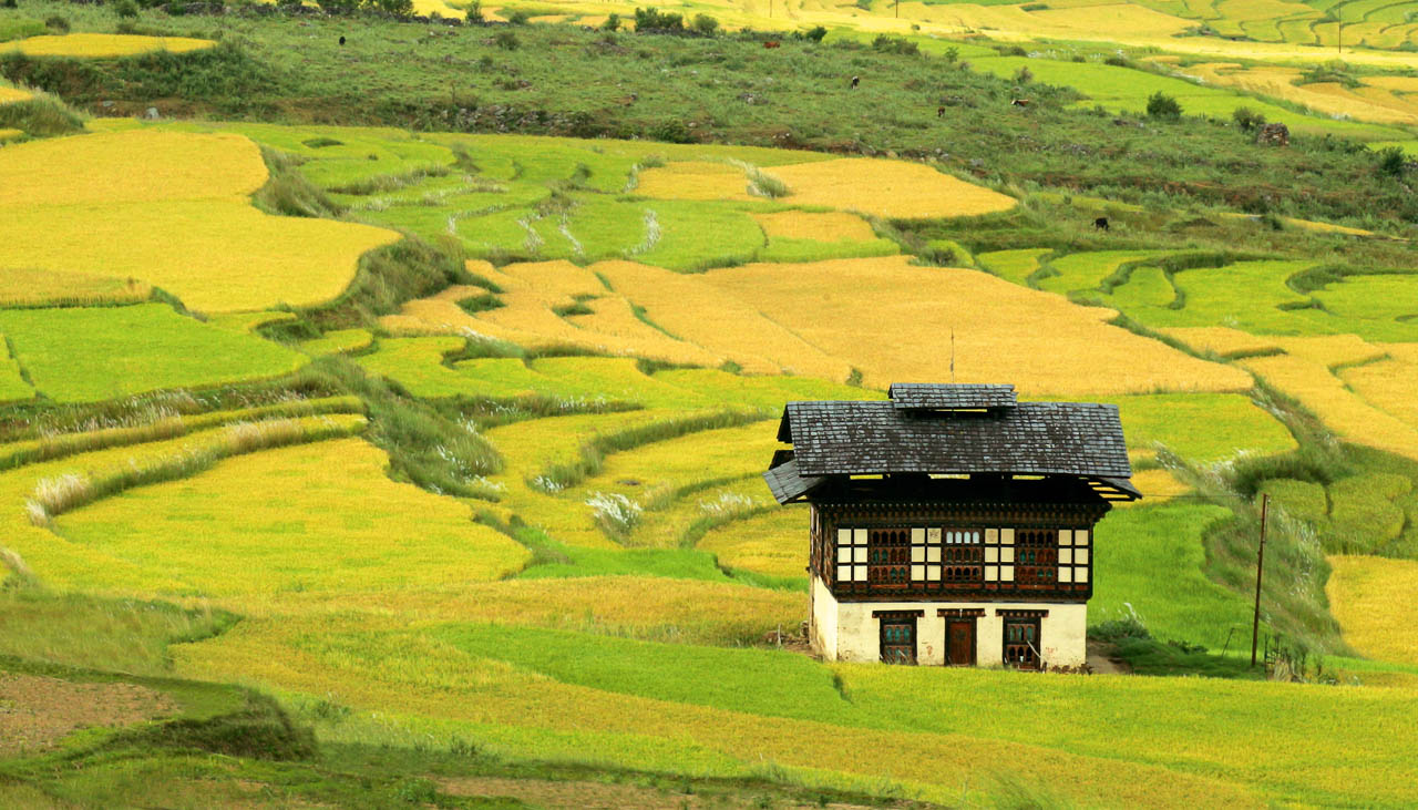 Landhaus in Bhutan