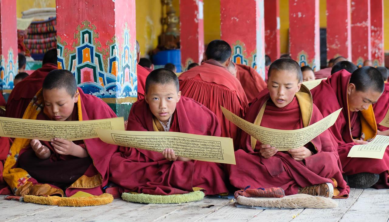 Mönchsschule im Kloster Sershul in Kham