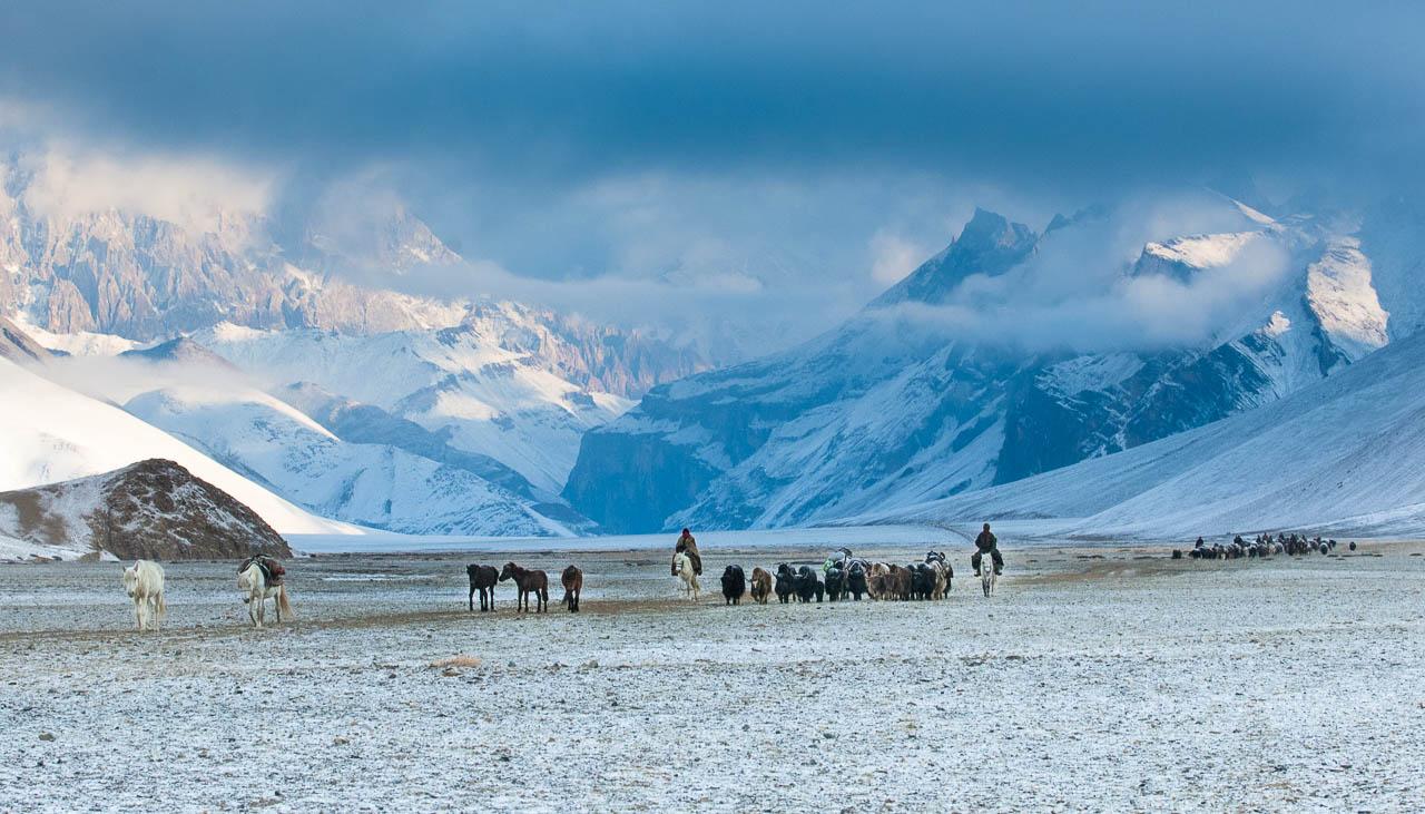 Früher Wintereinbruch auf dem Changthang Hochplateau in Ladakh