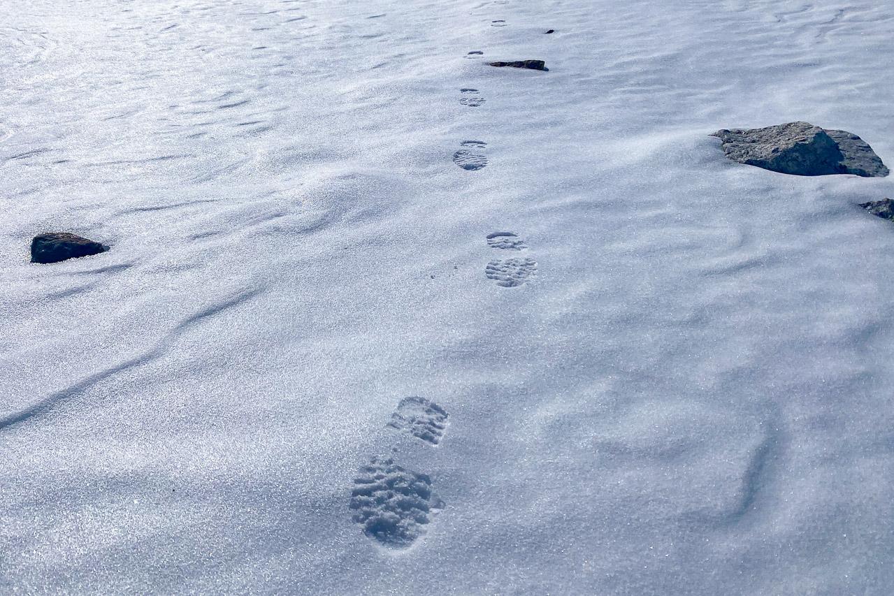 Der gute Trittschnee macht das Laufen angenehm und schnell. Wir wandern oft neben dem eigentlichen Weg.