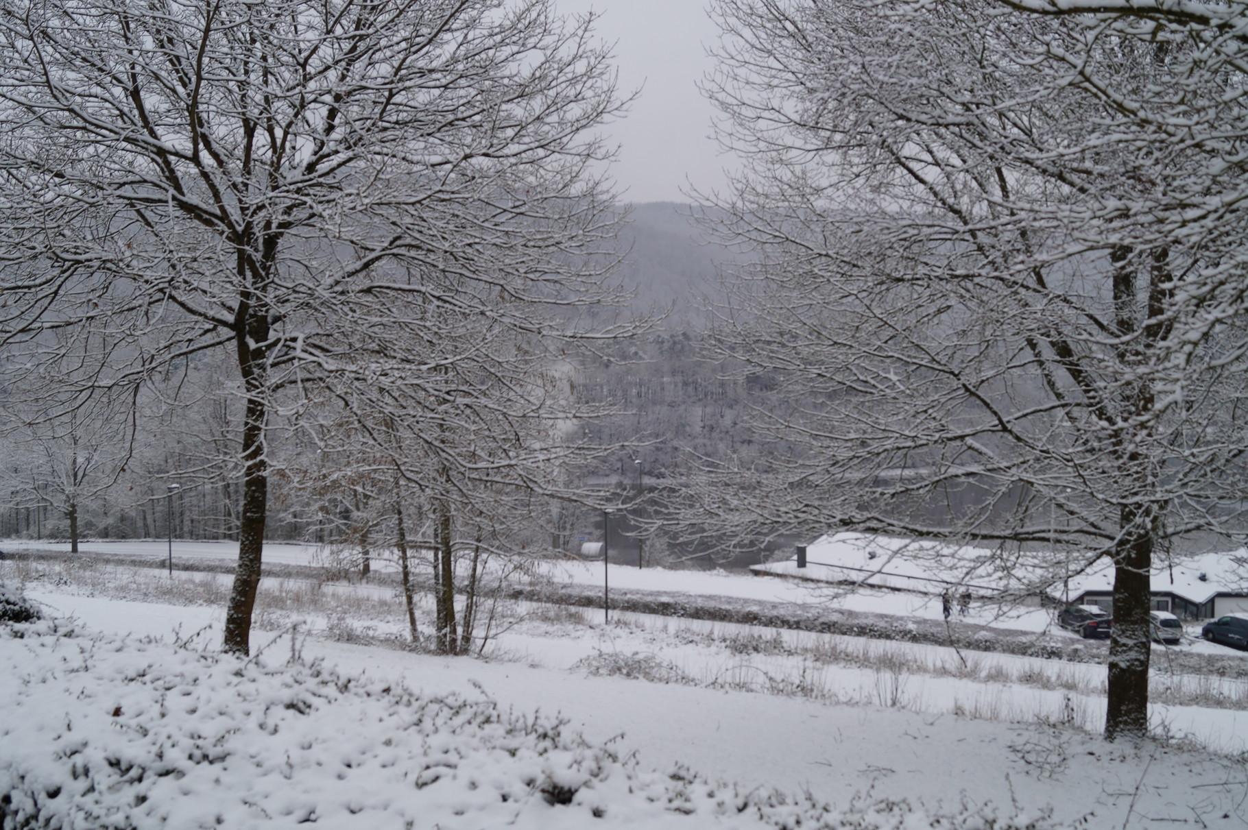 Blick auf den See im Schnee