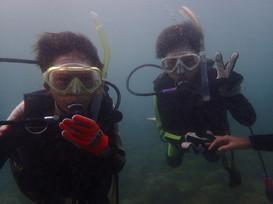 子供から大人まで、初めての水中世界を楽しめる体験ダイビング