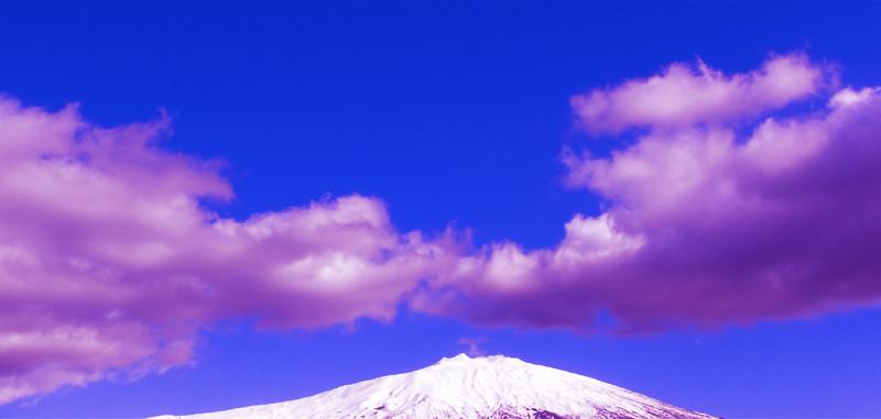 Cod. Etna 019