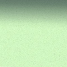 3  Moquette rase vert pâle