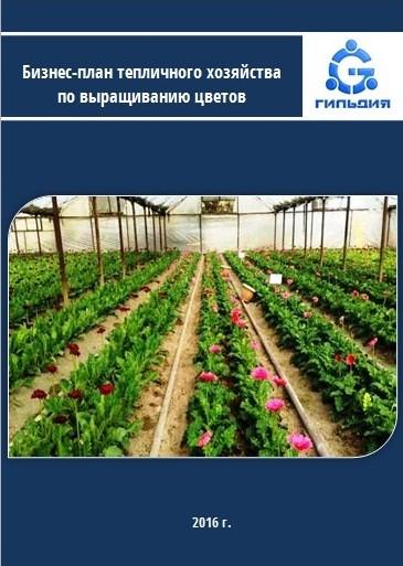 человеку даётся бизнес план хозяйства по выращиванию цветов гидравлических:насосов, цилиндров