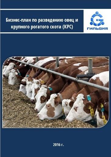 фотообои белого короткий бизнес план овцеводства таблицы фото результате съёмки