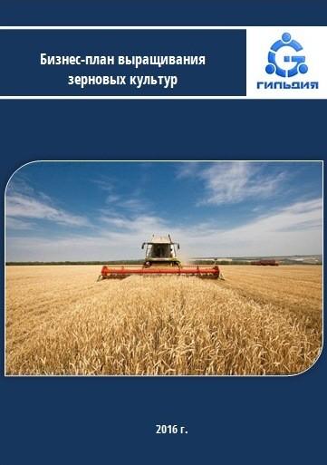 1 бизнес идея Бизнеспланы сельское хозяйство  какой