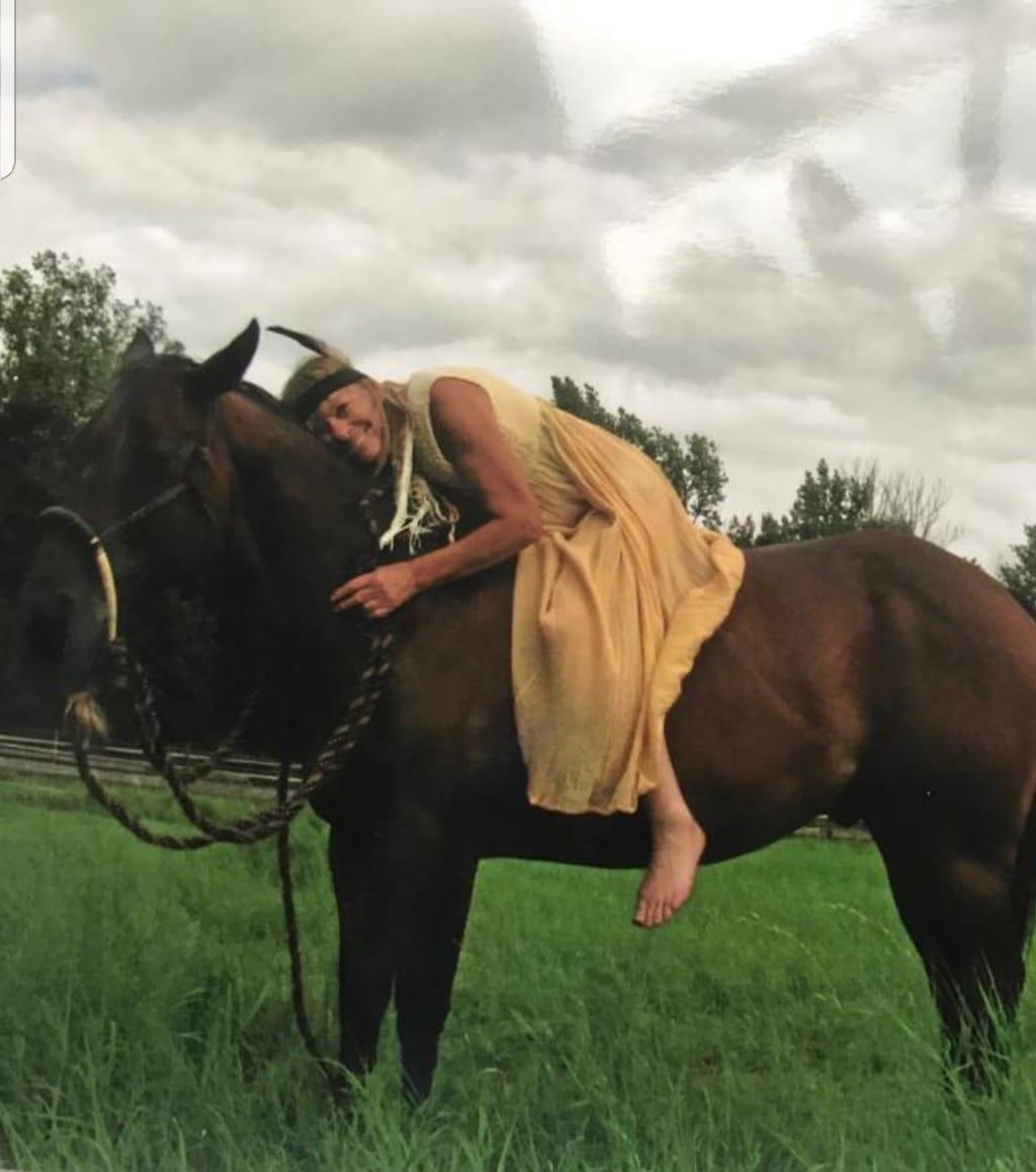Quarter - Horse, Wallach - Thunder - von Lissy S.