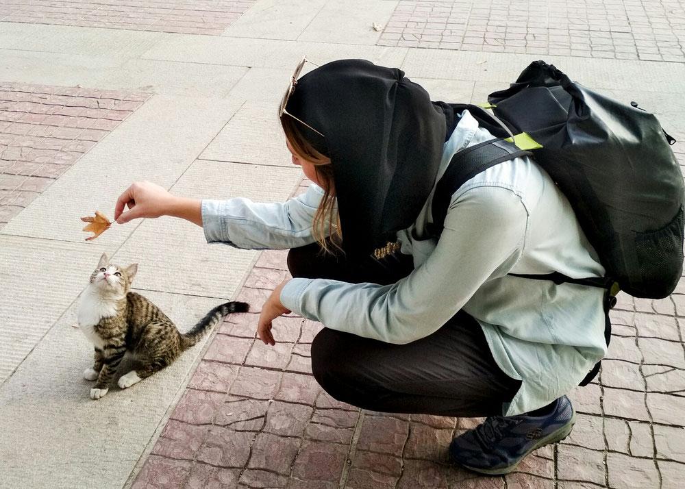 Coucou toi !! 10minutes de pause à chaque fois qu'on croise un chat... 😻