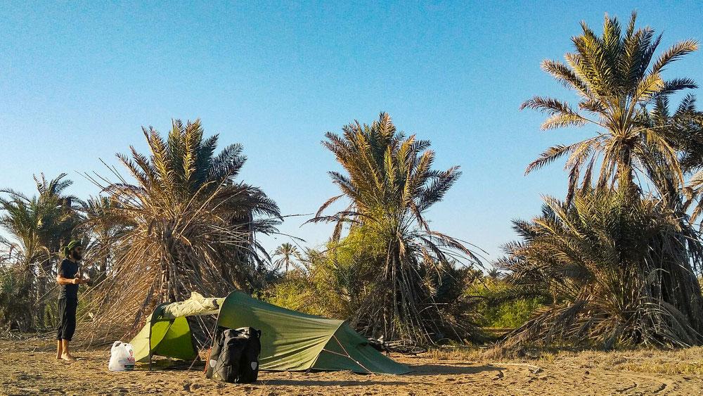 Bivouac dans la palmeraie (un peu décimée quand même..)