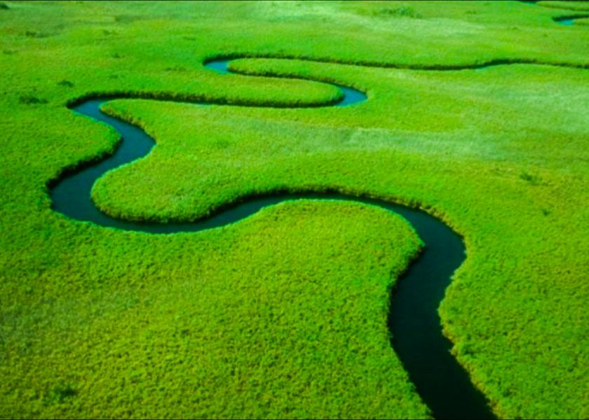Le delta de l'Okavango vu du ciel (est-il nécessaire de préciser que cette activité était également un peu en dehors de notre budget...?)