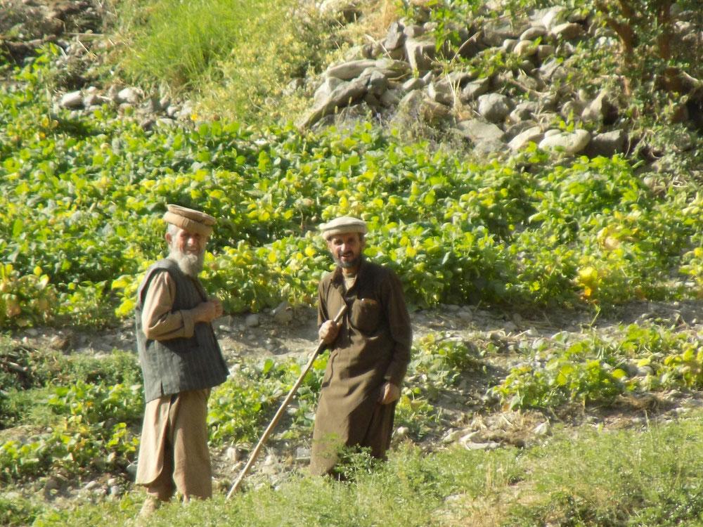 Papis afghans, ils nous faisaient coucou depuis l'autre rive.