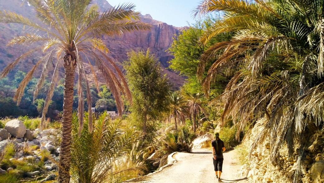 Wadi Tiwi, on se croirait en Asie du Sud-est !