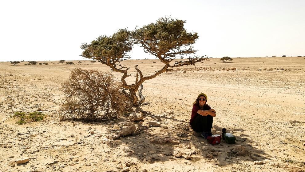 Ouiiii un arbre !! De l'ombre !!!!