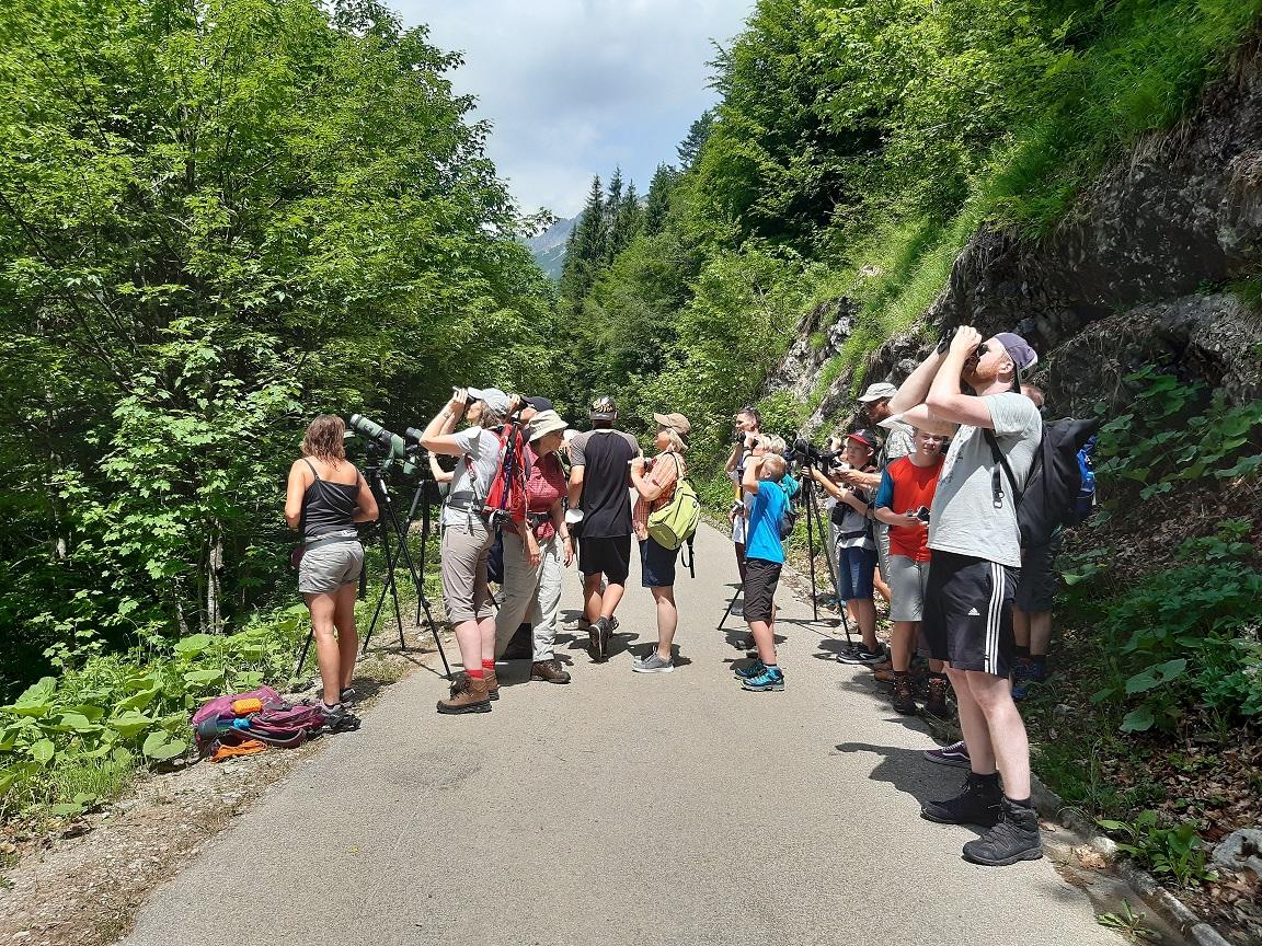 Wahrend der Wanderung ins Reich des Steinadlers - Foto: L. Heuß