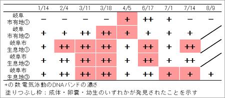 表2 調査適正時期の解析