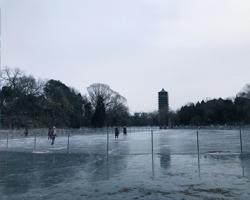 冬の未明湖