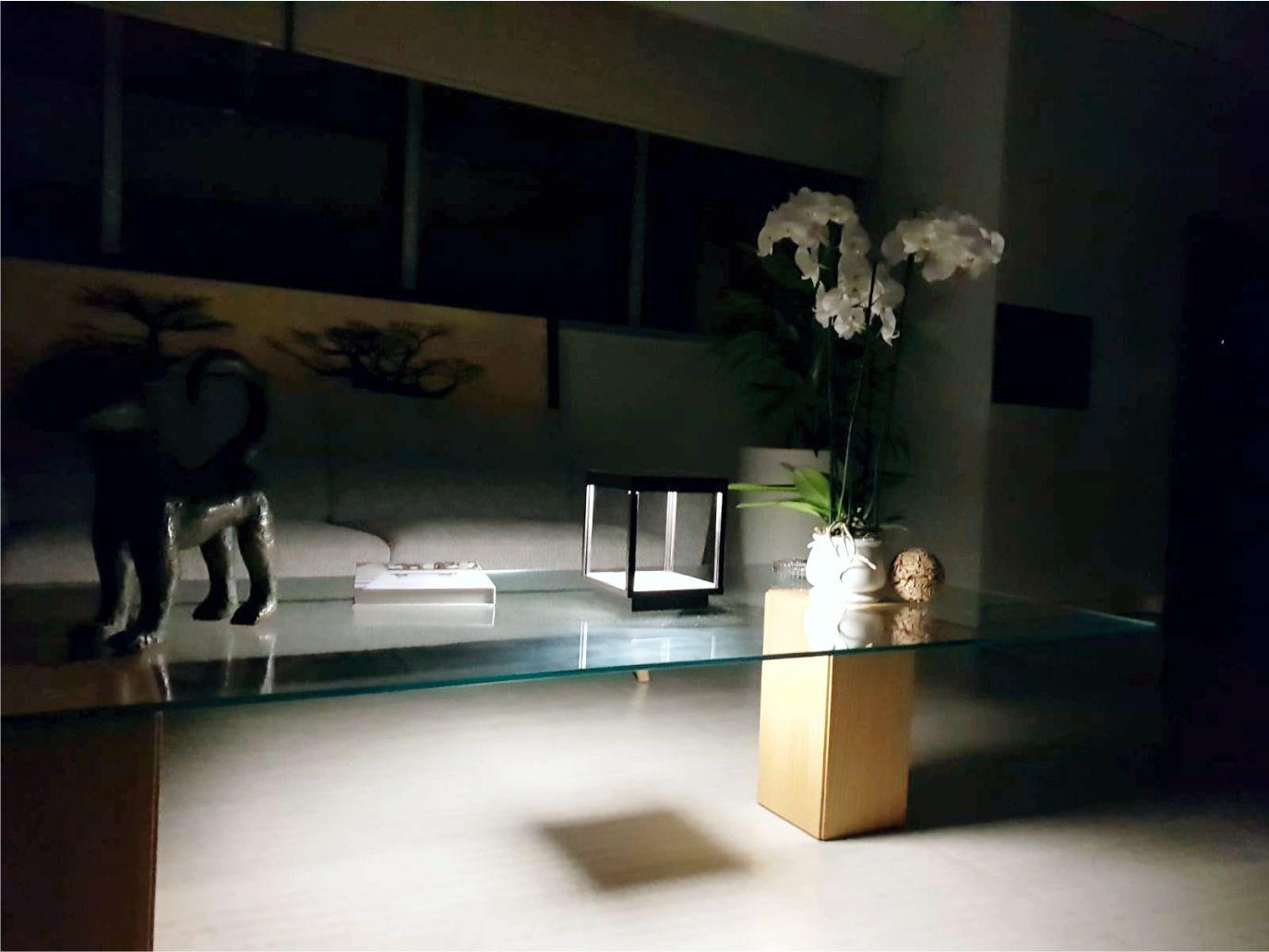 Als dekoratives Element im Wohnbereich