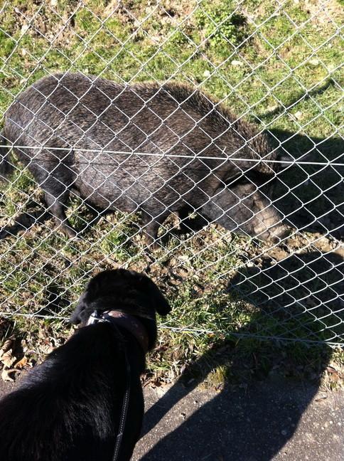 Artur knüpft neue Freundschaften.
