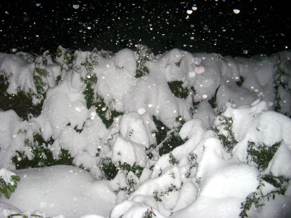 Schnee ohne Ende!