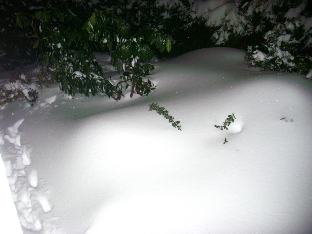 Hier unter diesem Schneeberg...