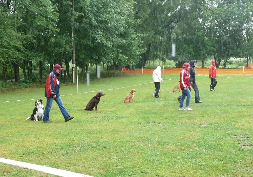 Gruppenübungen im strömenden Regen - tapfer durchgehalten