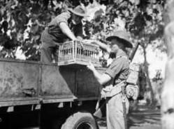 Bij de training van de duiven werd ook gebruik gemaakt van vrachtauto's