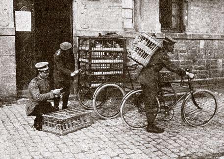 Het vervoer van militaire duiven, in dit geval van de Duitse cavalerie