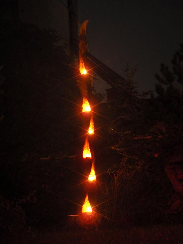 """""""Flammenbaum"""" nachts"""