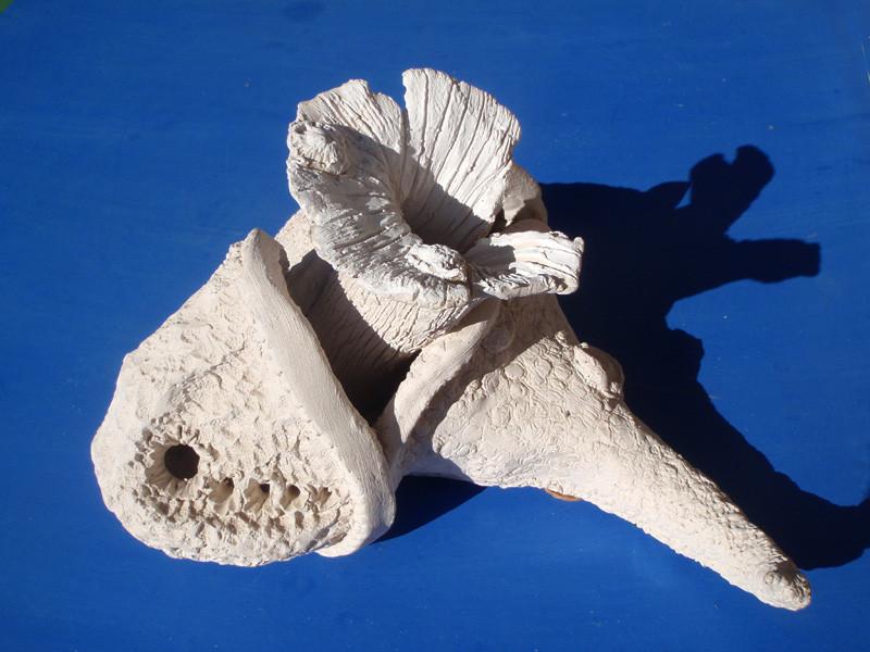"""""""Anemone"""" 2002: Keramik: 27cm x 20cm x 15cm"""