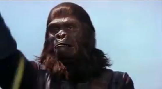 ein Schockmoment für die Zuschauer der ersten Generation: zum ersten Mal sieht man die Affen im Film