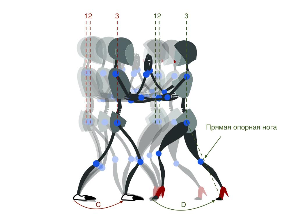 Рис. 4. 1-2 — смещение центра тяжести при переносе веса на месте; 2-3 — смещение центра тяжести при переносе партнером веса с задней ноги на переднюю, которое будет одинаковым в паре; С — шаг партнера, D — смещение ноги партнерши. Причем С и D пока могут