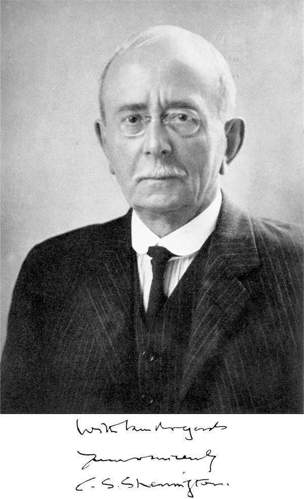 Сэр Чарльз Скотт Шеррингтон (Charles Scott Sherrington) — британский учёный в области физиологии и нейробиологии. Лауреат Нобелевской премии по физиологии и медицине в 1932 году (совместно с Эдгаром Эдрианом) «за открытия, касающиеся функций нейронов».