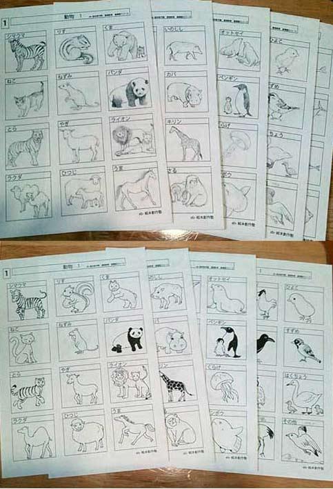 沢山のものを描ける為に、調べて見て描く基礎コース課題