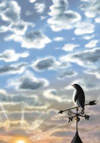 冨山栄理の「風見ドリ」
