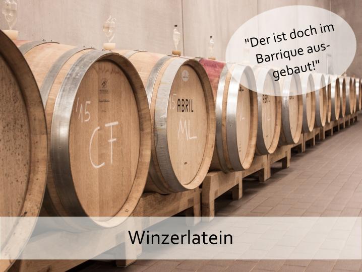 Winzerlatein | Wein-Ausbau im Barrique? Was heißt das und was bringt es dir?