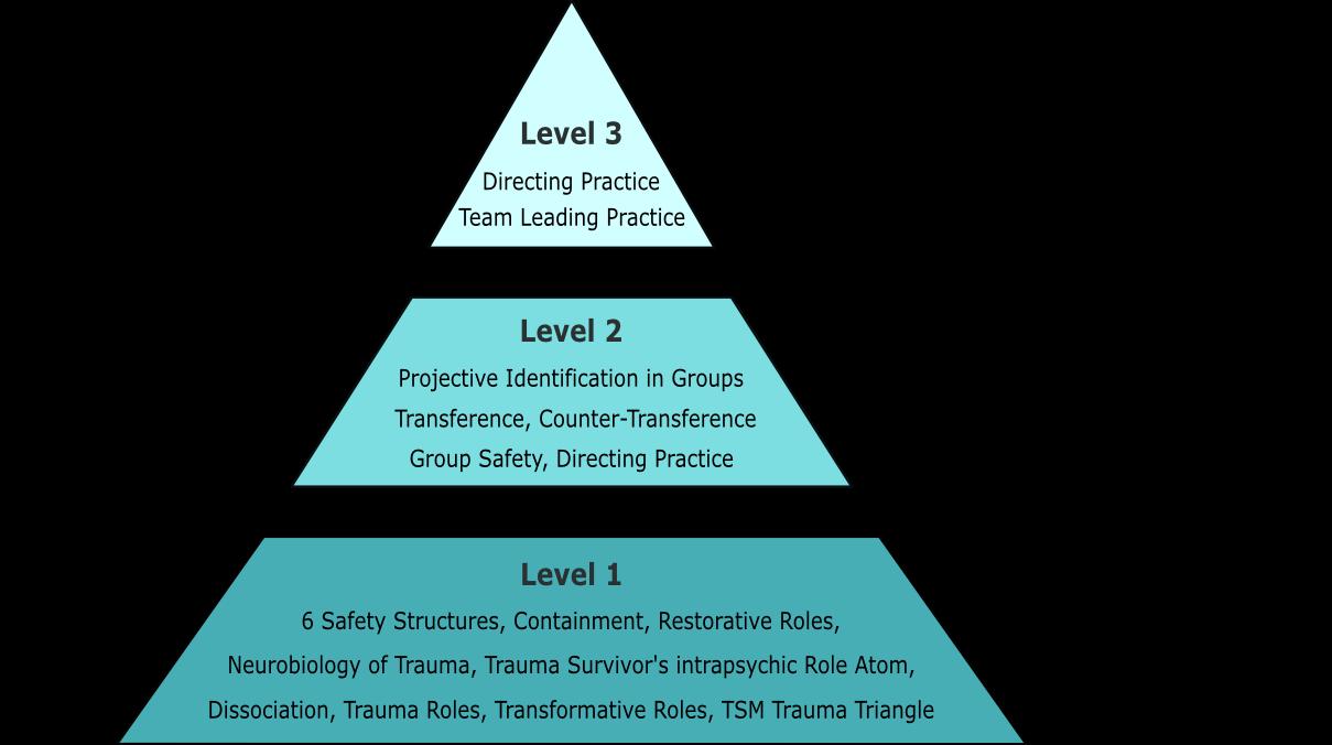 Training program trauma psychodrama xflitez Images